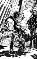Hulk Vs Wolveryne by santiagocomics