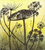 Winter Hogweed by LynneHendersonArt