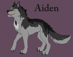 Aiden Sheet by dat-Fips