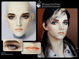 Venitu faceup commission by scargeear