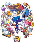 Happy 25th, Sonic the Hedgehog by herms85