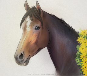 Oxbow's Black-Eyed Susans by vixentheangryfox