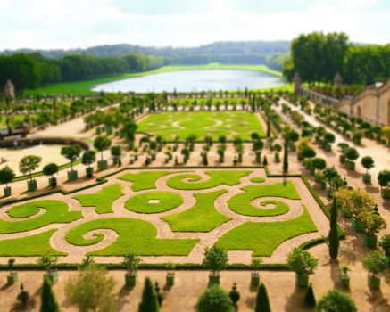 Toy Garden by nadinedavid