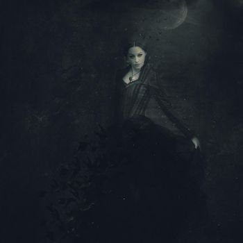The Queen of the Night by beszteri