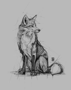 20171119 Fox Psdelux by psdeluxe