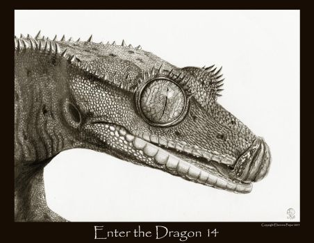 Enter the Dragon 14 by Ellygator
