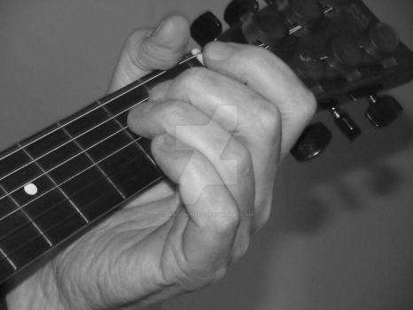 Guitar Frets: Black and White by DragonPress