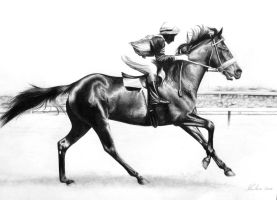 Race Horse by AliceParkes