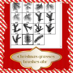 Christmas grasses brushes by roula33