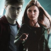 Harry and Ginny by DarkScar26