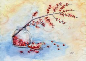 Winterberry and pomegranate by Sandra-777