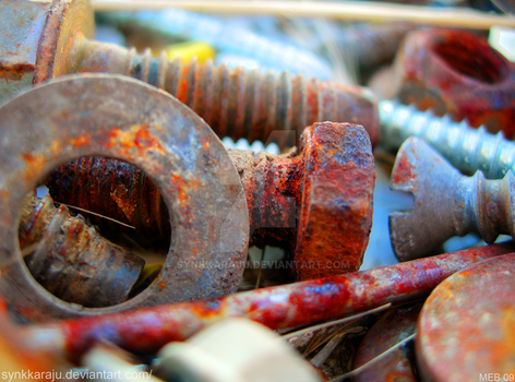 Rusty Screws by SynkkaRaju