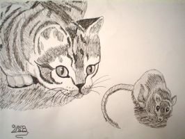 cat and maus by Sheena66