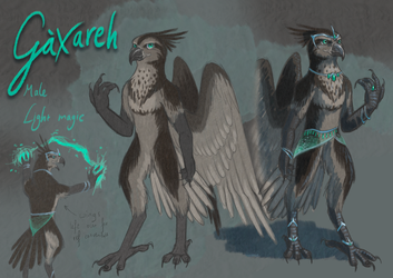 Gaxareh Reference Sheet by The-fox-of-wonders