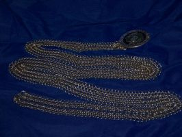 Chainmaille belt Picture One by Des804