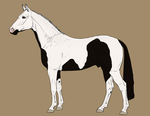 Horse Auction - CLOSED by Anonymous-Shrew