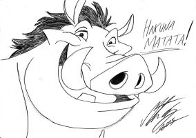 Disney - Pumbaa by MortenEng21