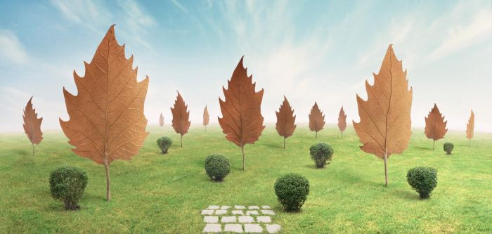 Leaf Trees by divotomezove