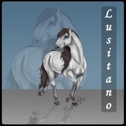 Lusitano by Aiclo