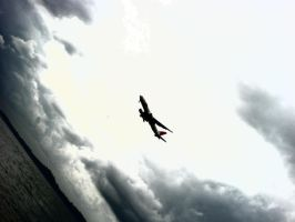 Fly. by simplycomplexed