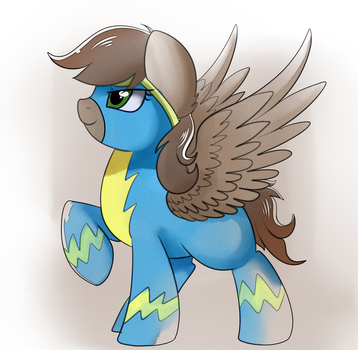 Watercolor Comm: Wonderbolt by pridark