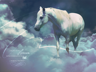 A Horse In The Heaven by OpenLife