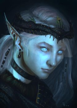 Skyrim Last of the Snow Elves by 1Rich1