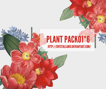 plant pack-01-#6 by Crystallanxi