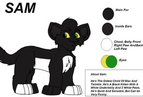 Sam Character Sheet by Charlie-Breen