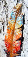 Phoenix Rising Leather Feather by Arexandria