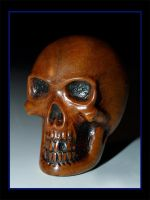 Carved Skull 2 by lieinbelieve