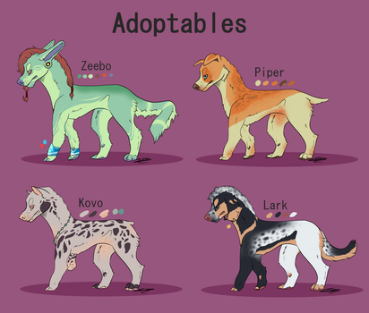 (Adopts) IDK JUST OFFER?? by jazzyloveswolves