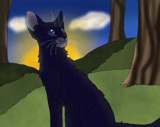 More Crowfeather by TheRealBramblefire