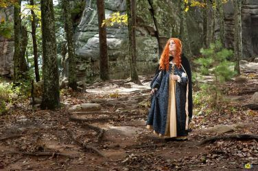 Merida in the Woods by LyddiDesign