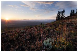 Cle Elum Lookout by Raymaker