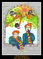 Weasley Twins' Animagus by Ktuloo