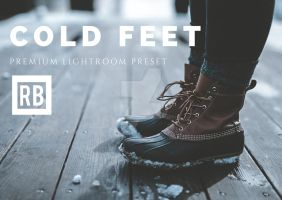 Premium Lightroom Preset - Cold Feet by RetouchingBlog