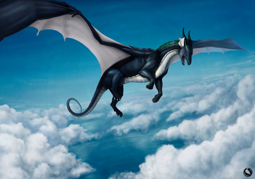 Above the clouds by Rastaban26