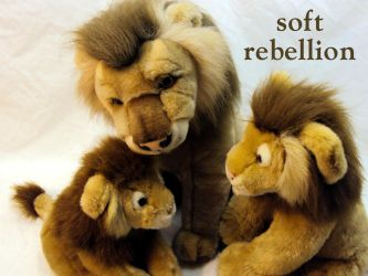 soft rebellion by toa267