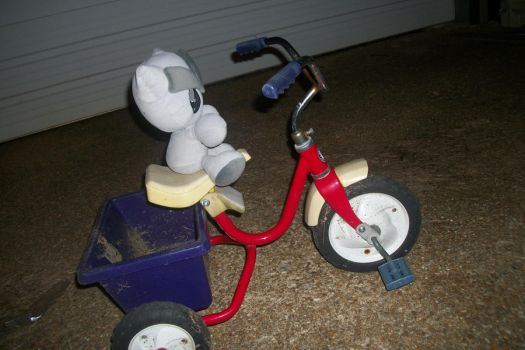 trike 52-365 by boomer-anonymous