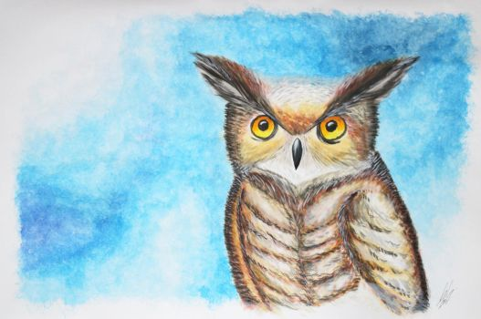 Owl by SilverSoo