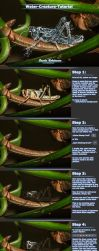 Tutorial: Water-Creatures by B-O-K-E