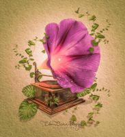 Flower Gramophone by erkanozan