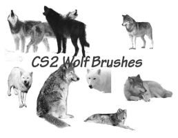 Wolf Brushes for Photoshop CS2 by CelticMagician