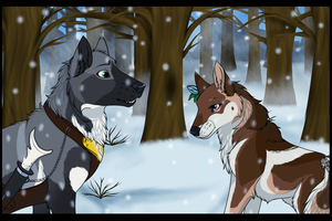 WD| Ava | Meeting under the falling snow by DancingOrbi