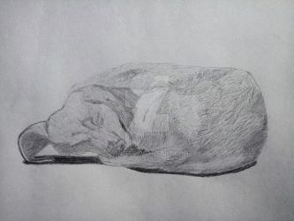 Sleeping dog - 2B Pencil by vrl97