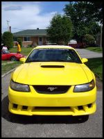 Yellow Mustang-Saleen by Pascalou
