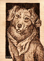 Best friend- pyrography by FuzzyMaro