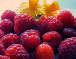R is for Raspberry by Nataschaa