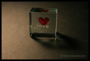 Love You by Xerces